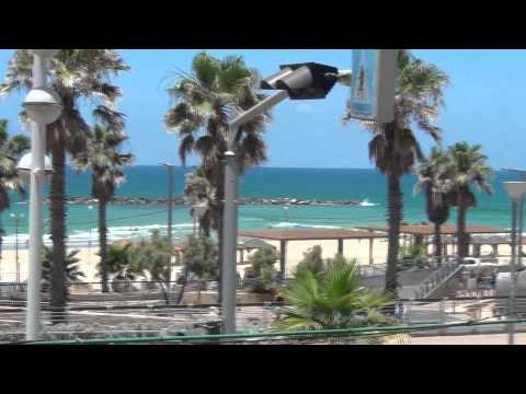 Ne Obliviscaris Israel 2015