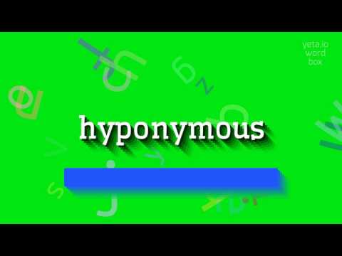 "How to say ""hyponymous""! (High Quality Voices)"