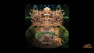 Shpongle - The Magumba State