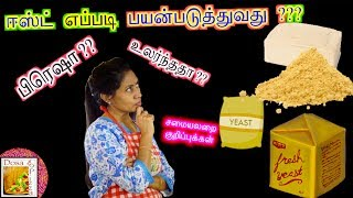 How to use Yeast ?? - in Tamil | Kitchen Tip Session | Dosa To Pizza