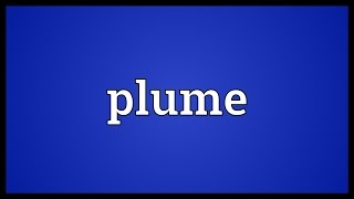 Plume Meaning