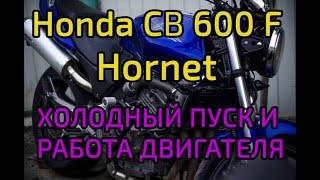 Honda CB 600 F Hornet холодный пуск и работа двигателя(Мотоцикл 2001 г/в., 2016-05-03T13:10:46.000Z)