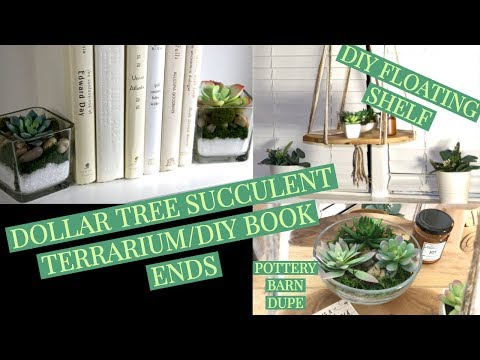 DIY FLOATING SHELF/DOLLAR TREE SUCCULENT BOOK ENDS AND TERRARIUM