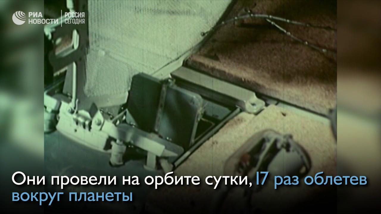 Ровно 57 лет назад Белка и Стрелка отправились в космос
