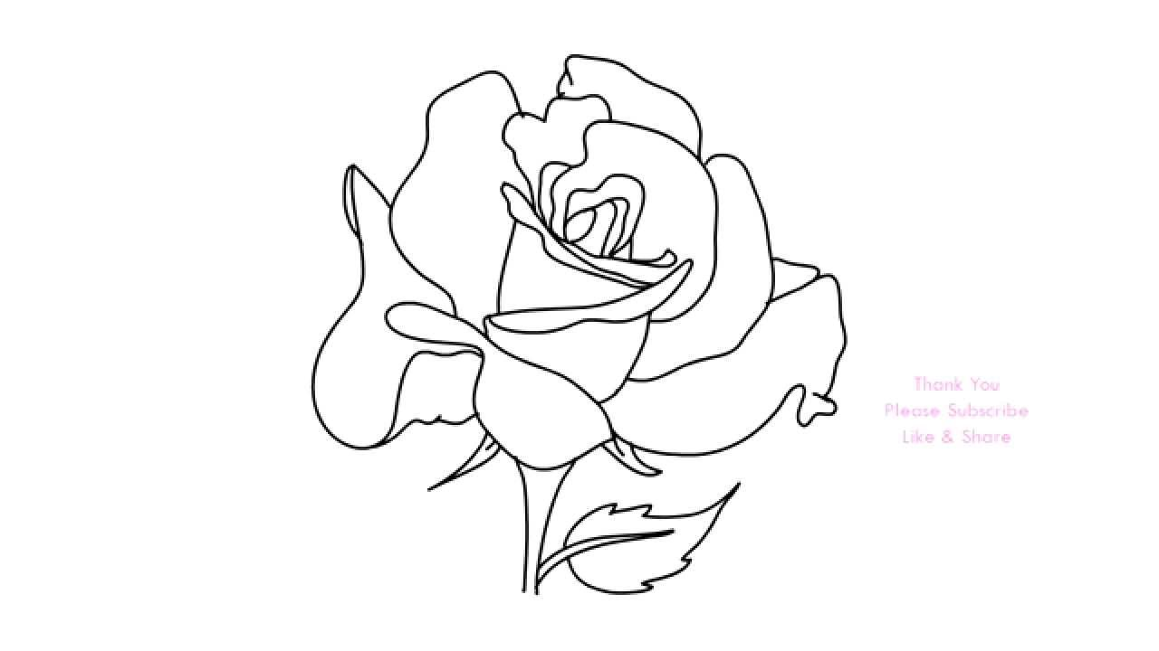 D Line Drawings You Tube : How to draw a rose flower easy line drawing sketch youtube