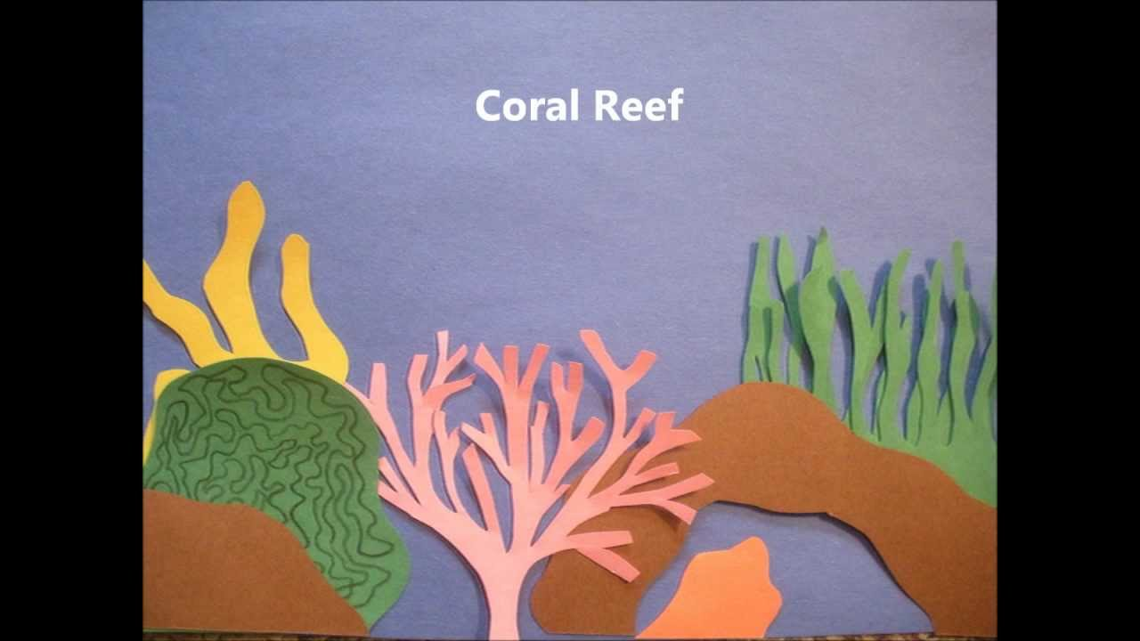 Coral reefs youtube coral reefs sciox Image collections