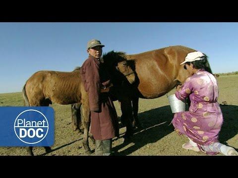 Genghis Khan. Nomadic Desert   Culture - Planet Doc Full Documentaries