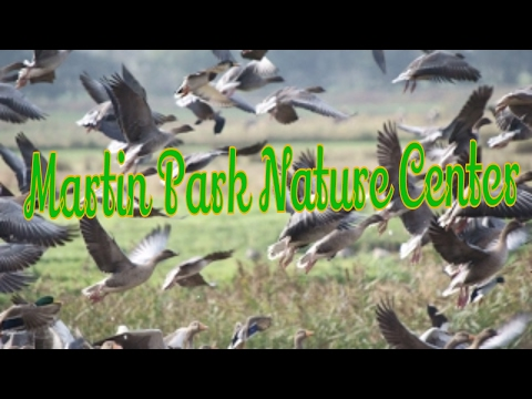 Visiting Martin Park Nature Center, Park in Oklahoma City, Oklahoma, United States