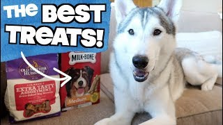 3 Best Treats For Siberian Huskies And How To Use Them!