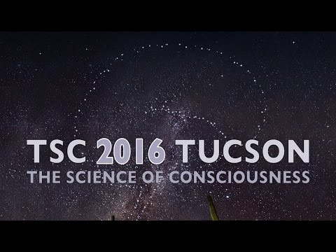 The Science of Consciousness Conference (TSC) 2016