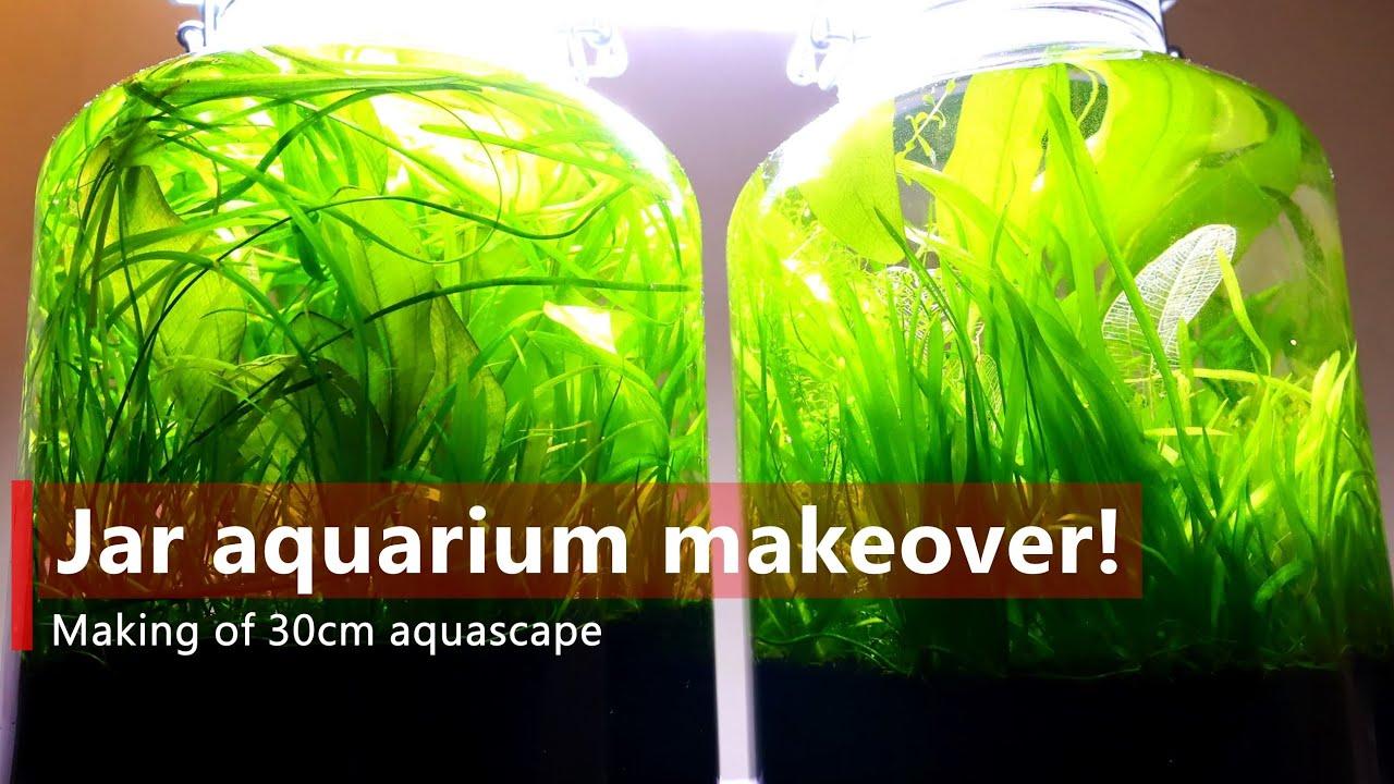 Making of 30cm NANO AQUASCAPE, from 2 jar aquarium【No ...