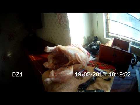 В Камышловской колонии из курицы осужденному изъяли телефон, сим-карты, наушники, зажигалку и прочее