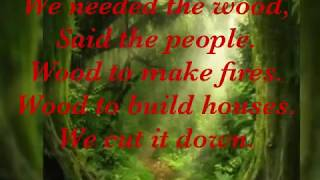 8-CI SINIF INGILIS DILI  WHERE IS THE FOREST?