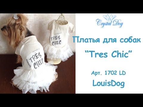 Смотреть онлайн Платья для собак