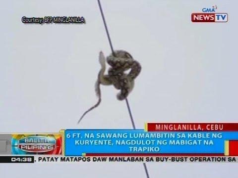 6 ft. na sawang lumambitin sa kable ng kuryente, nagdulot ng mabigat na trapiko