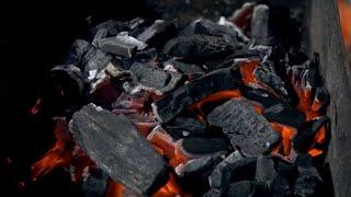 Обзор древесного угля от Grilly - уголь для шашлыка из твердых пород