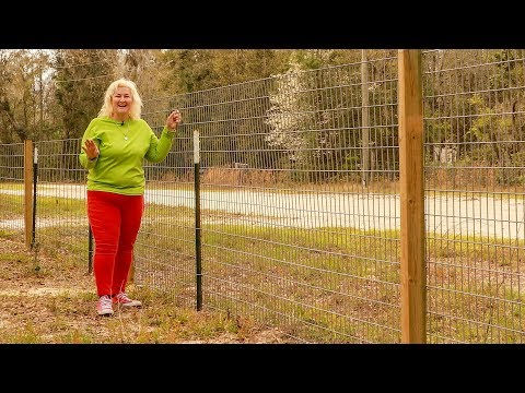 Here's The Best Livestock Fencing For Your Little Farm #farmlife