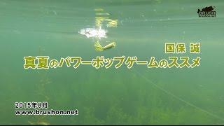 【琵琶湖】真夏のパワーポップゲームのススメ 国保 誠