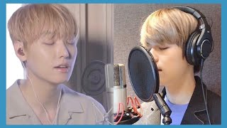 DAY6 - You Were Beautiful (예뻤어) Cover by SF9 Inseong & Stray…