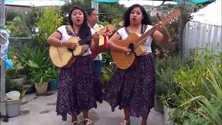 Cantando  la delgadina y  siempre  lloro-Hermanitas valle