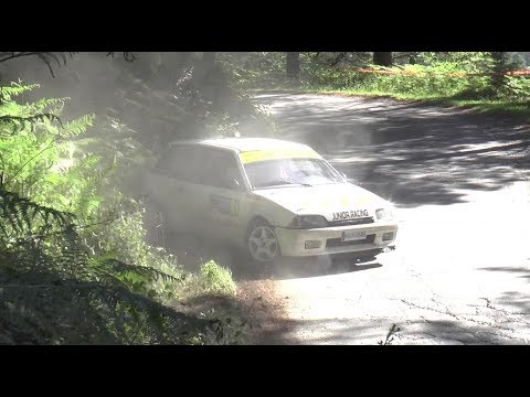 Rally Balcón de Bizkaia 2017 - Challenging Stages for Brave Drivers