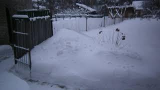 После снегопада расчистил дорожку во дворе