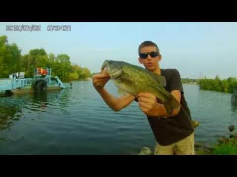 BIG Bass Whitewater Lake, WI