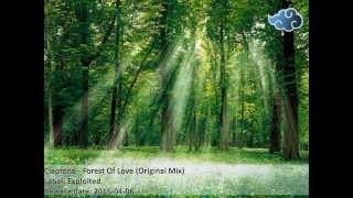 Claptone - Forest of Love (Original Mix)