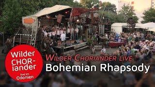 Bohemian Rhapsody - Wilder CHORiander live im Odonien | RAUM Film