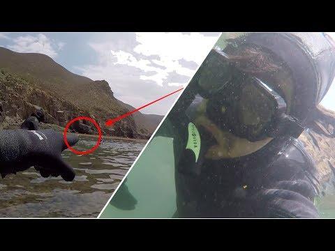 Vi a una foca mientras hacia snorkel | Víctor González