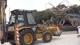 GUINNESS WORLDS BIGGEST LOBSTER @RAINBARREL ISLAMORADA FL ANTI-CHRIST Obama