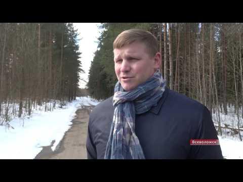 Рабочая поездка Андрея Низовского по Всеволожску