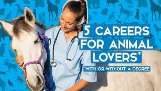 5 Awesome Jobs Working With Animals