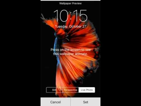 How To Get Live Wallpapers On Older iPhone Devices (LiveWallEnabler Cydia Tweak Tested On iPhone ...