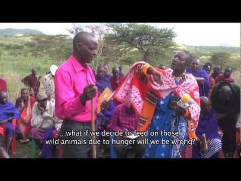 Ngorongoro Conservation Area Food Crisis 2012