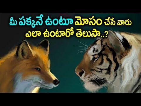 మీతో స్నేహంగా ఉంటారు మీ గోయె తీస్తారు..! | A Motivational Story Of Fox | Human Life Facts | Sumantv