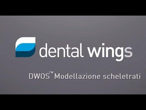 DWOS™ Modellazione scheletrati