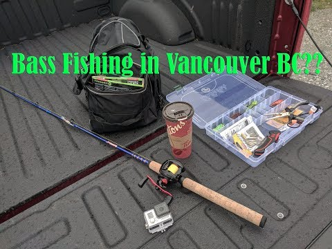 Fishing For Bass In Vancouver