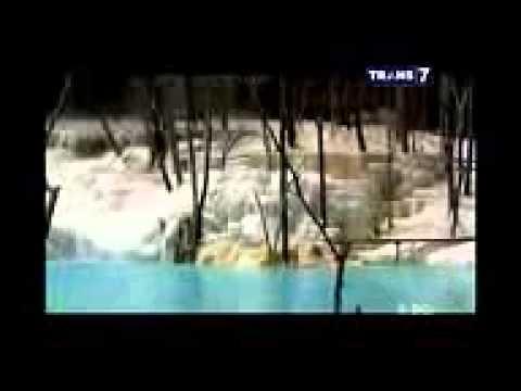 Distributor Pupuk Npk Dolomite Urea KCL Di Pare Pare Sulawesi Selatan