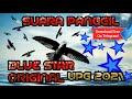Sp Blue Star Original Upg  Suara Panggil Walet  Mp3 - Mp4 Download