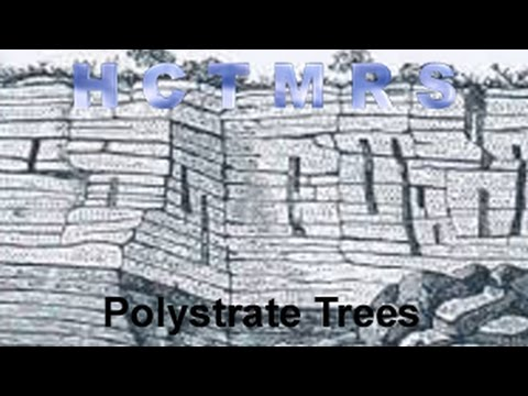 How Creationism Taught Me Real Science 04 Polystrate Trees