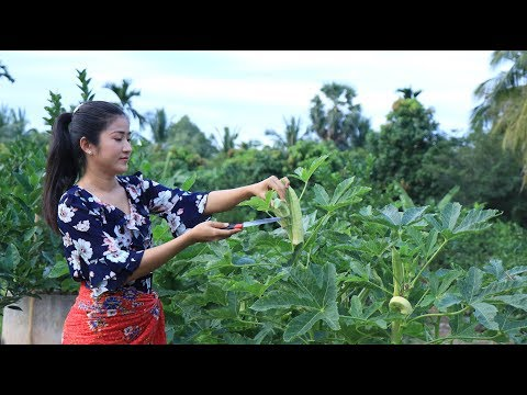 Okra with beef recipe - Okra cooking - Prepare by countryside life TV.