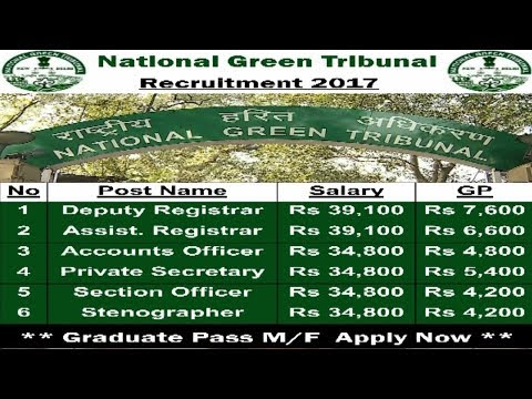 National Green Tribunal Recruitment | Sarkari Naukris in September 2017  | Graduate jobs