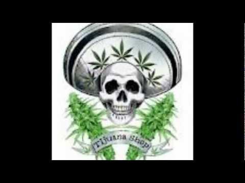 marihuana-cartel de santa