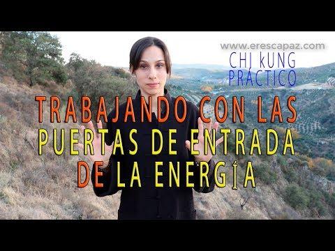 Trabajando con las Puertas de Entrada de la Energía (Chi Kung Práctico)