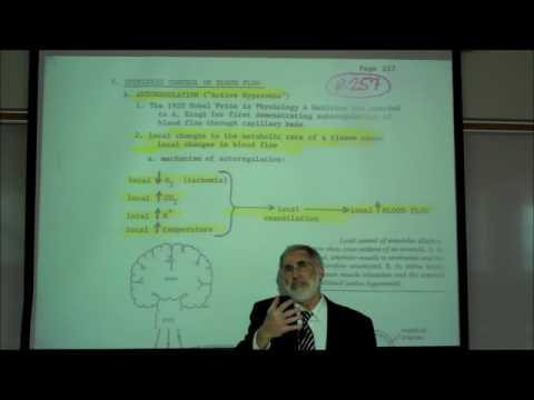 AUTOREGULATION & Other Factors Affecting Blood Flow by Professor Fink
