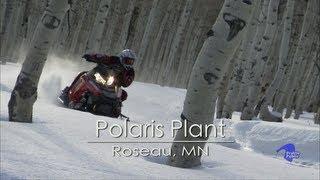 Polaris Plant