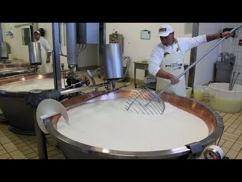 World Amazing Croissants Making Process And Bread Production Line Inside Factory