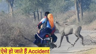 How A Nilgai Came In front of Bike ? What Happened ||tech earth||