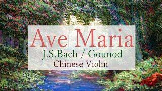 Bach / Ave Maria on Erhu Instrumental   アベマリア / 二胡 翠月淳